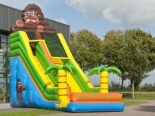 glijbaan-gorilla